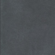 Vander Berg Furniture & Flooring - Leather 2410